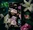Чехол для iPhone 11 Pro Perfume Lily Series Case Black